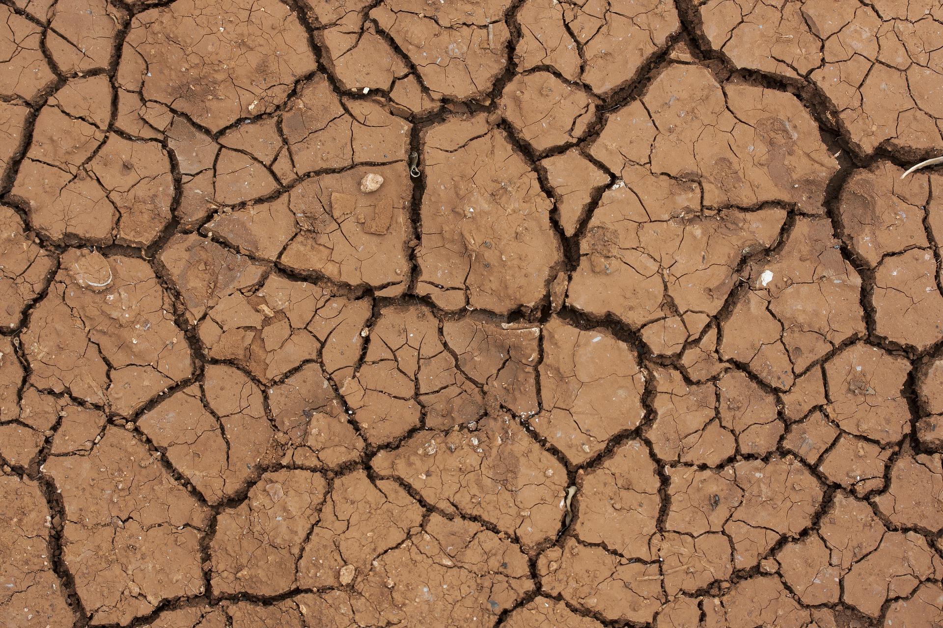 Pourquoi faire une étude de sol avant de construire ?