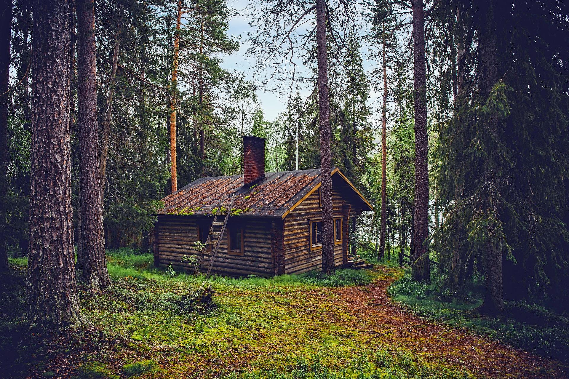 Quid de l'humidité dans une maison à ossature bois ?