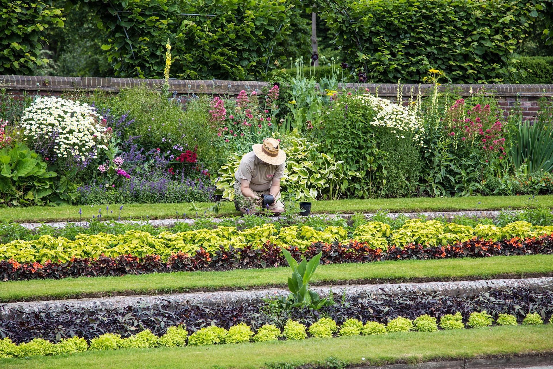 Pourquoi planter des fleurs dans son jardin ?