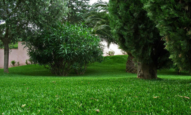 Les avantages d'utiliser du gazon artificiel pour votre pelouse